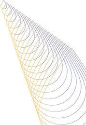 pattern2-50per-pt